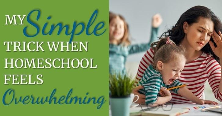 Tip when homeschool feels overwhelming